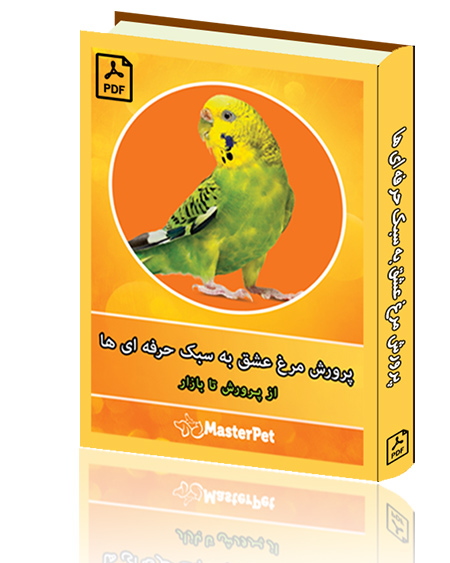 کتاب پرورش مرغ عشق به سبک حرفه ای ها